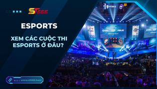 """Top 5 game esport nổi bật """"tôi có thể xem các cuộc thi Esports ở đâu""""?"""