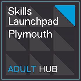 Adult Hub.jpg