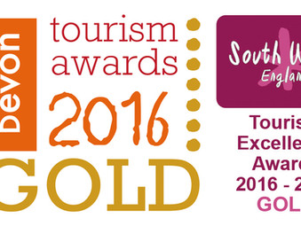 Plymouth Armed Forces Day wins Gold at South West Tourism Awards