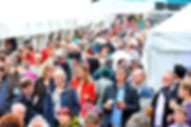 Flavour Fest Crowd