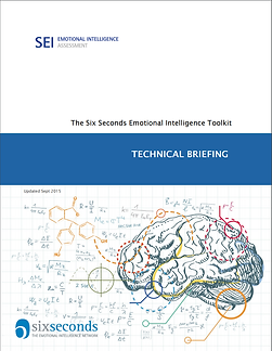 SEI Technical briefing.png