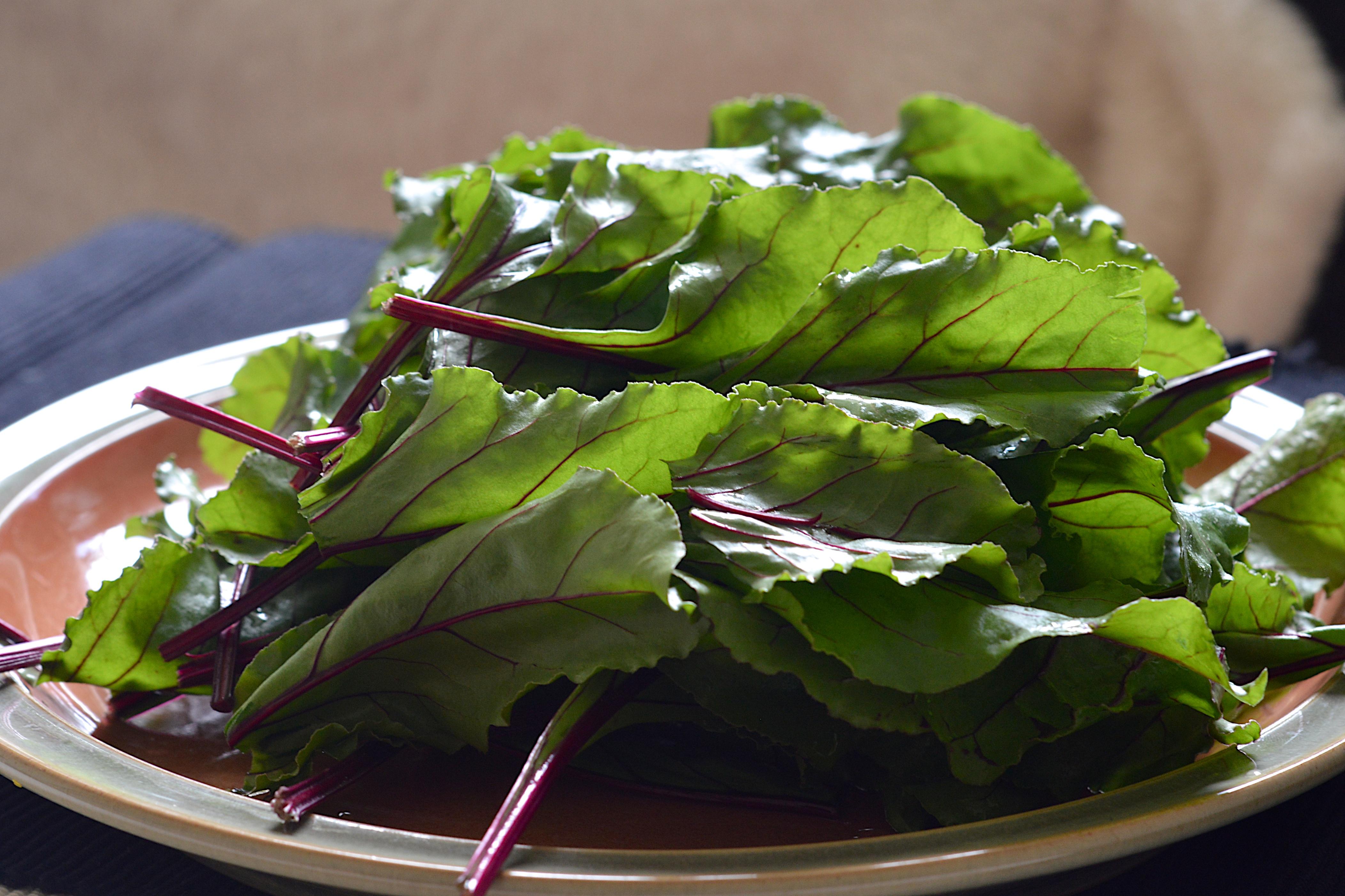 Beet leaves.jpg