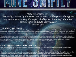 Islamic Exhibition Posters - Scientific Miracles in the Qur'an No. 10