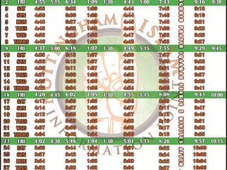 Salah Timetable - April 2021