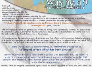 Islamic Exhibition Posters - Scientific Miracles in the Qur'an No. 6