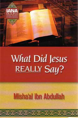what did jesus really say.jpg