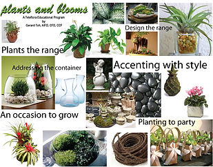 plants-and-blooms.jpg