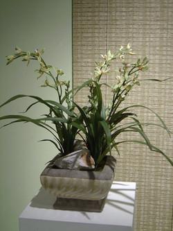 orchid+2.jpg