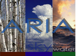 aria-home-page.jpg
