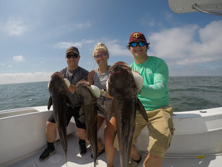 Cobia, Spanish and Flounder!