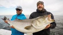 Big Rockfish!!