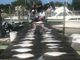 WOW! Great fishing Flounder, Cobia and Spadefish