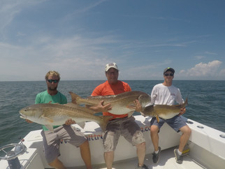 EPIC DAY! Huge Red Drum, Big Flounder and stud Cobia's! #SaltTreatedFishing