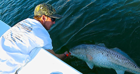 Zack Hoffman red drum