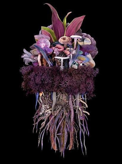 """""""Botanicals: Twilight Troupe"""" By Jana Nicole"""