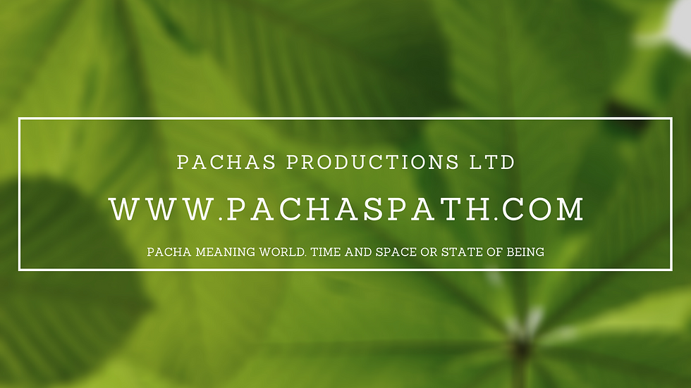 PACHAS BANNER.png