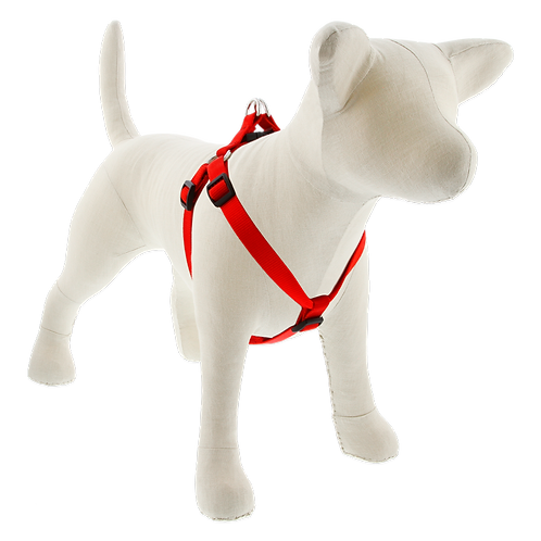 Lupine Pet Basics Red Step in Harness