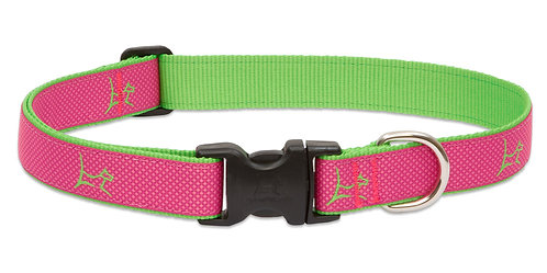 Lupine Pet Club Bermuda Pink  Adjustable Collar