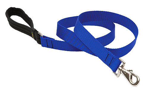 Lupine Pet Basics Blue Padded Handle Dog Leash (6 Foot)