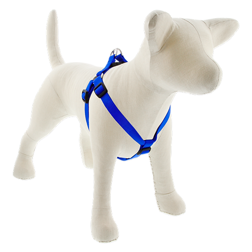 Lupine Pet Basics Blue Step in Harness