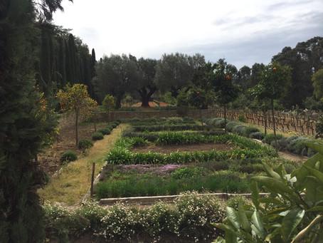 Le jardinier innovateur