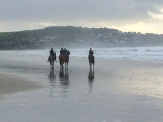 CLEARING THE MIND - Horses on the beach