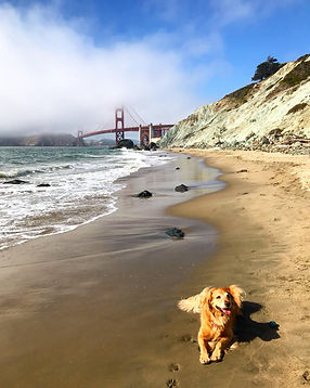 California travel plans, Lehigh valley travel planner, san francisco travel agent, customized travel planner, Personal travel planner, beach vacation itinerary, customized trip planner, step-by-step travel planner, detailed travel itineraries, travel planner service, personal travel planning service for busy moms