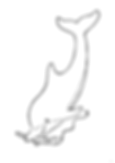 Painter_dolphyn.png
