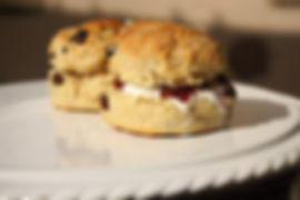 photoscones_edited_edited.jpg