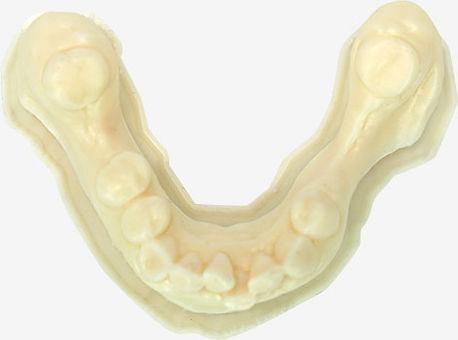 LC-Dental-Arch.jpg