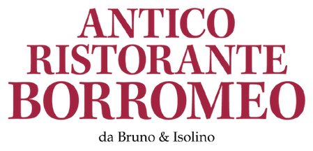 LogotipoBorromeoRosso-2021.png