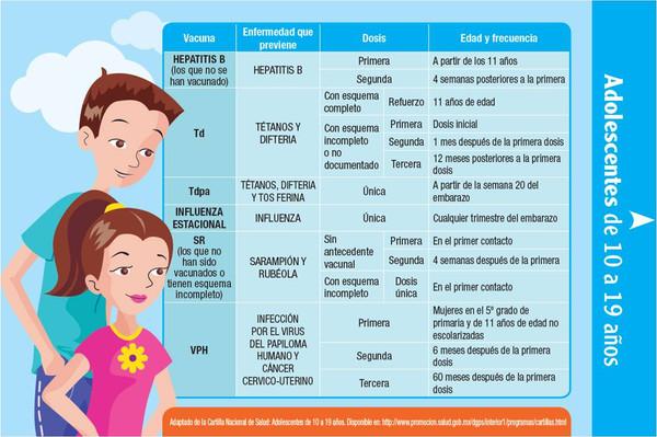 Esquemas de vacunación por edades: desde recién nacido hasta la tercera edad...