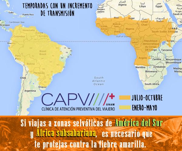 Vacuna contra la Fiebre Amarilla en Monterrey
