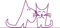 CANISWEET- Toilettage et massage canin à domicile Yvelines 78