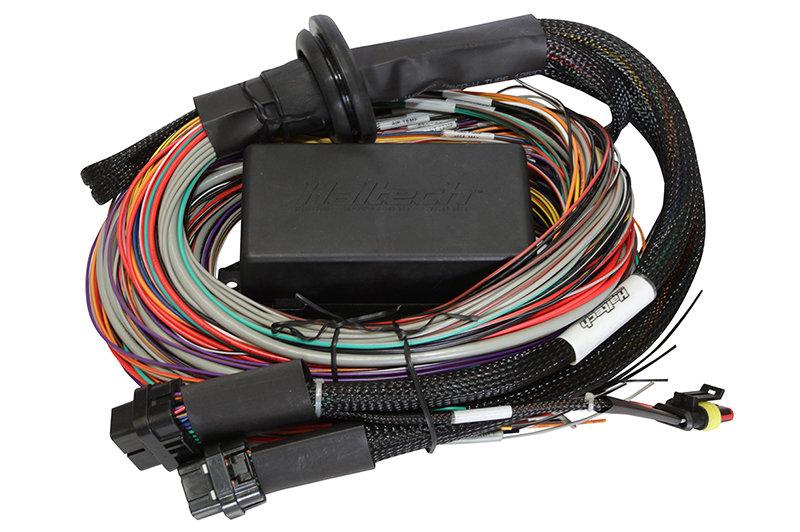 Haltech Elite 2000 Premium Universal Wire-in Harness LENGTH: 2.5m (8')