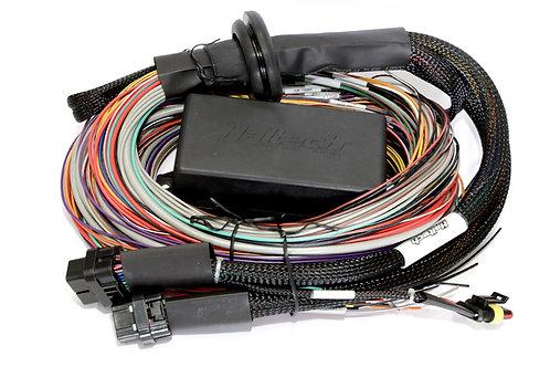 Haltech Elite 1000 Premium Universal Wire-in Harness LENGTH: 2.5m (8')