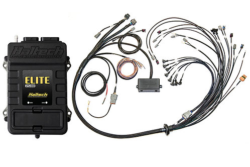 Haltech Elite 2500 T + Ford Coyote 5.0 Late Cam Solenoid Terminated Harness Kit