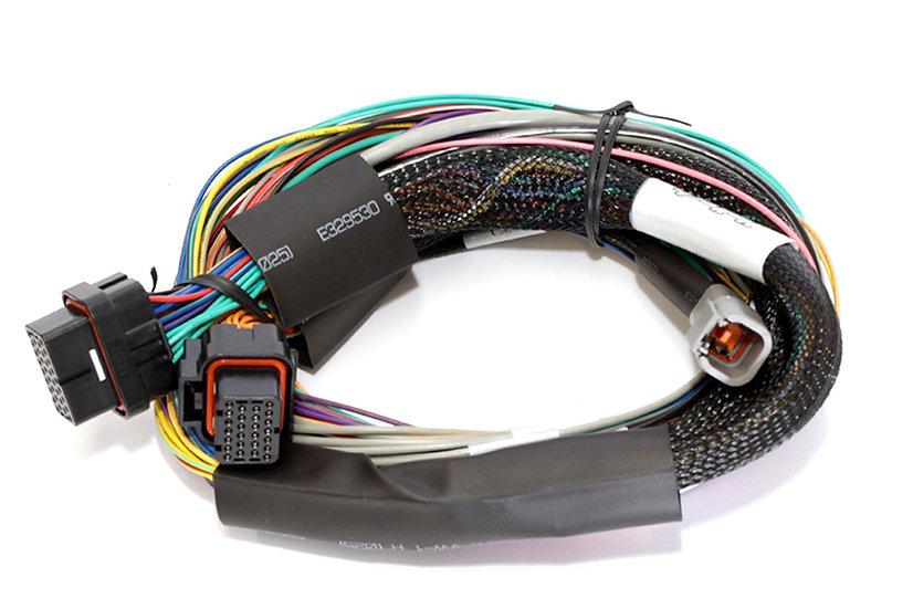 Haltech Elite 1500 Basic Universal Wire-in Harness LENGTH: 2.5m (8')
