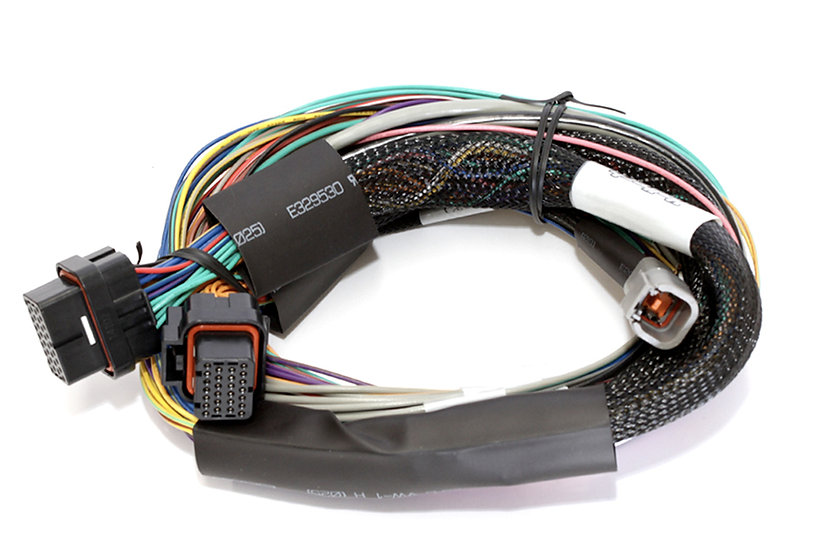 Haltech Elite 1000 Basic Universal Wire-in Harness LENGTH: 2.5m (8')