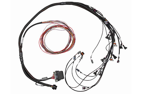 Haltech Elite 950 GM GEN III LS1 & LS6 non DBW Terminated Harness