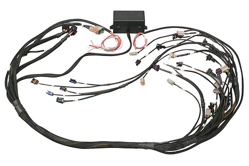 Haltech Elite 2500 GM GEN III LS1 & LS6 (DBW Retrofit Ready) Terminated Harness