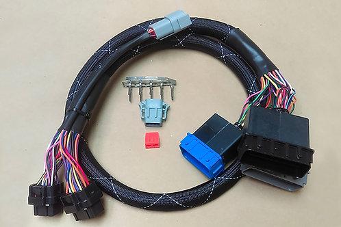 Haltech Elite 1500 Polaris Slingshot (2015-2016) Plug'n'Play Adaptor Harness