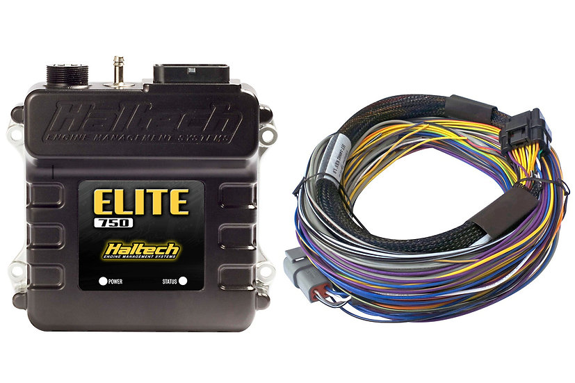 Haltech Elite 750 + Basic Universal Wire-in Harness Kit LENGTH: 2.5m (8')