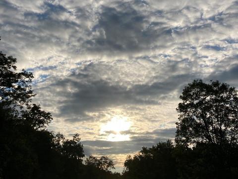 Upstate Geechie - Fall 2021