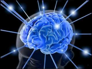 """Meditation:: The """"Inner Net"""""""