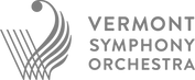 VSO logo.png