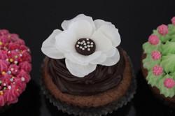 Cupcake fiore