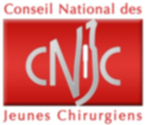 CNJClogo qualité ++.JPG
