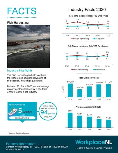 Industry Fact Sheet 2020