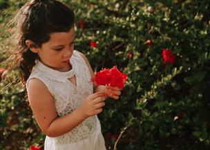 Flores-36.jpg